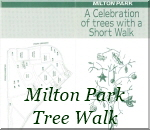 Milton Park Tree Walk